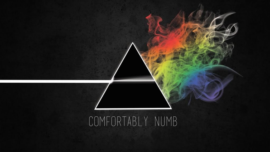 Comfortably Numb covers